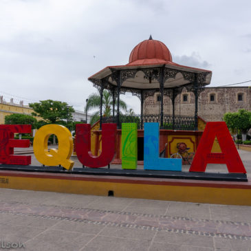 Puerto Vallarta Vacation: Day Trip to Tequila